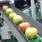 Te contamos cómo la tecnología digital transforma las fábricas de alimentos y bebidas